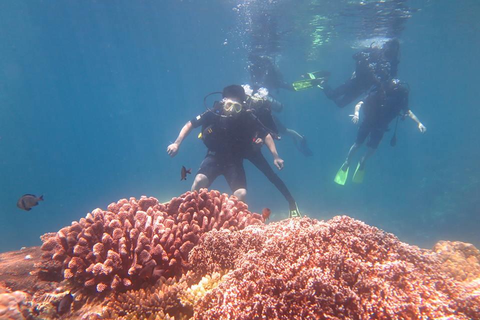 Lặn biển ở đảo Hòn Mun Nha Trang